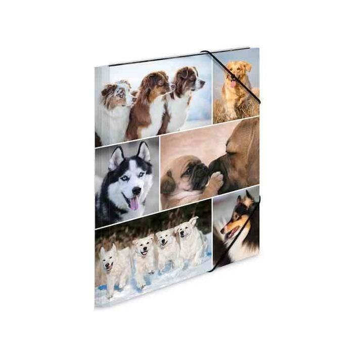 Chemise à élastiques 'chiens', en carton, A4