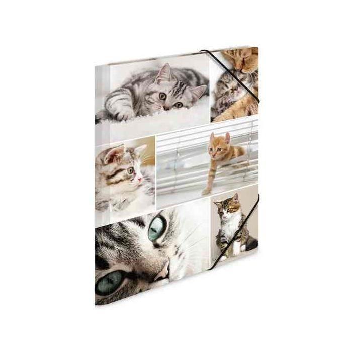 Chemise à élastiques 'chats', en carton, A4
