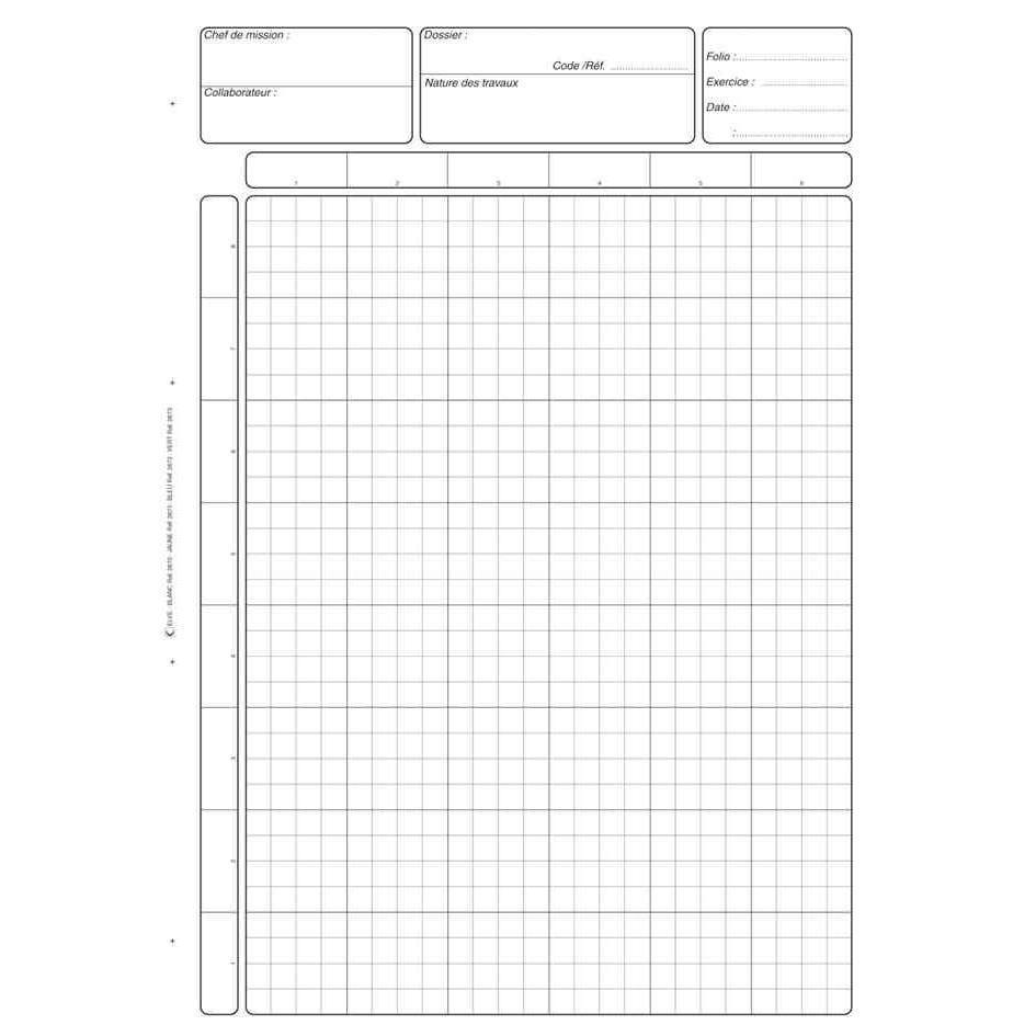 Bloc audit 'Contrôle interne' A4 80 pages Blanc
