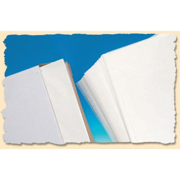 Boîte distributrice de 500 feuilles papier cuisson silicone 60 x 40 cm - 45g (photo)