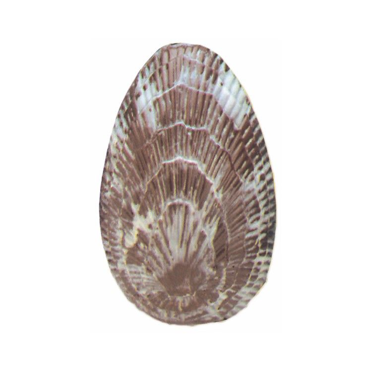 1/2 coquille ciselée de 172 mm (photo)