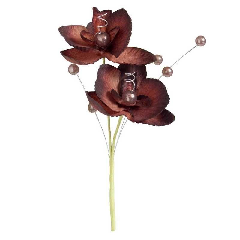 Double orchidées royales chocolat hauteur 12 cm - par 12 lots de 6