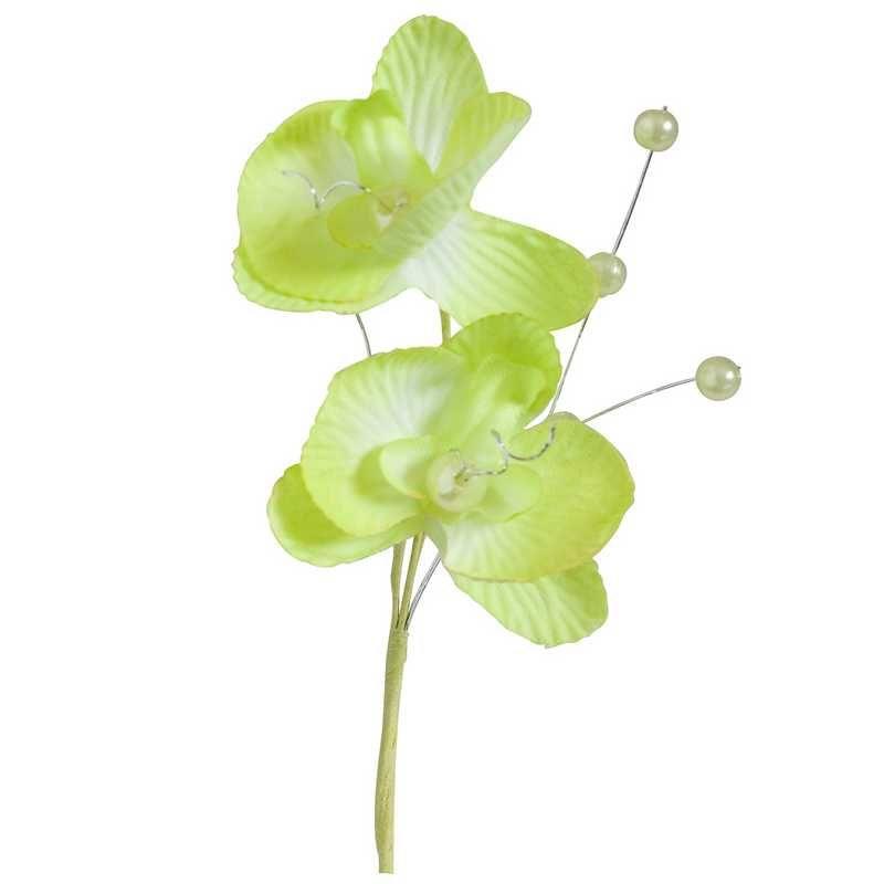 Double orchidées royales anis hauteur 12 cm - par 12 lots de 6