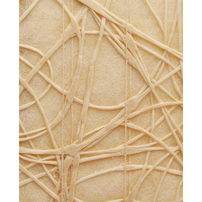 Chemin de table shibuya non-tissé naturel 30 cm x 5 m - par 5 lots