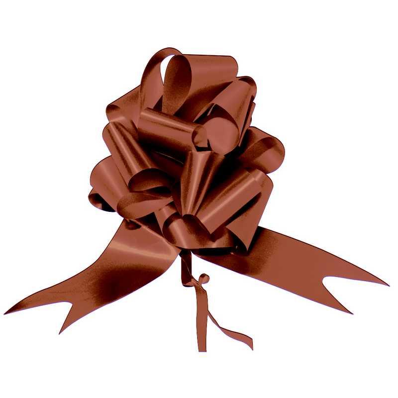 10 noeuds auto 168 cm chocolat (photo)