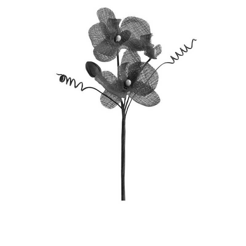 6 orchidées doubles esprit lin 15 cm noir (photo)