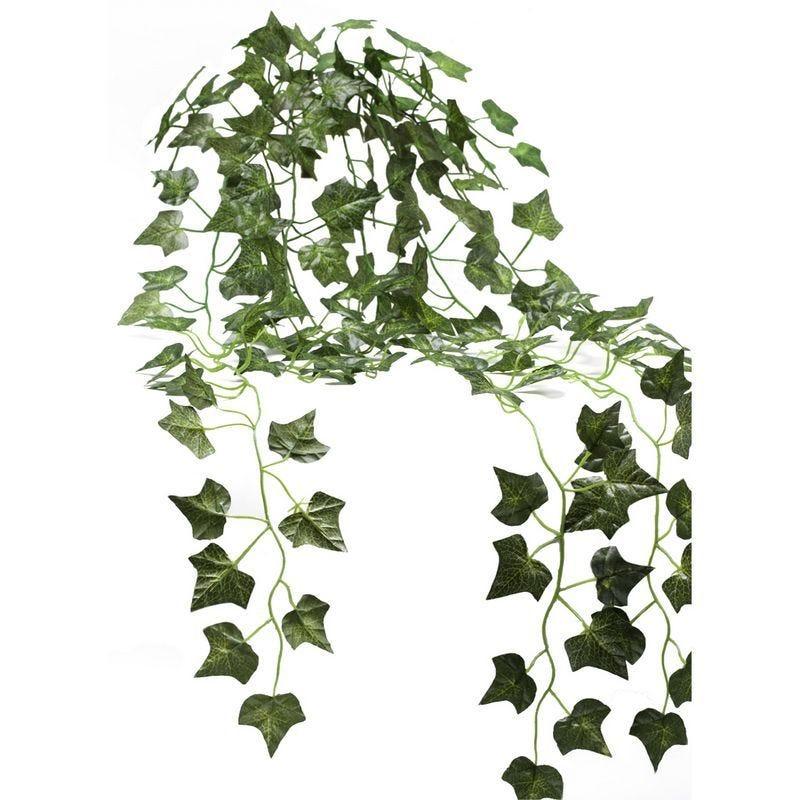 1 bouquet de lierre 90 cm (photo)