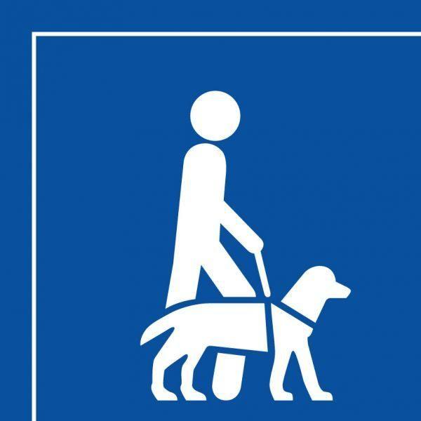Picto 046 accessibilité, chien guide ... Autocollant 125x125mm- blanc