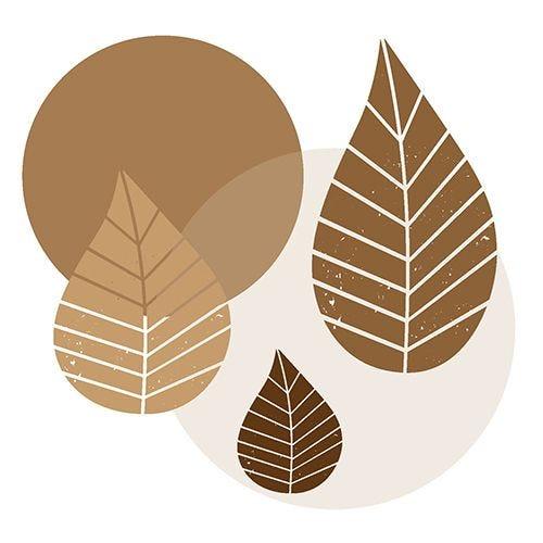 Serviette 3 plis pliage 1/4 40 cm x 40 cm naturel ''Graphic Leaves'' par 200