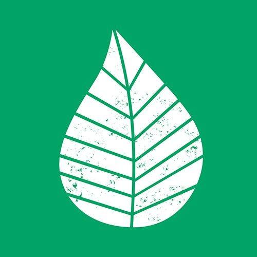 Serviette 3 plis pliage 1/4 33 cm x 33 cm vert ''Graphic Leaves'' par 200