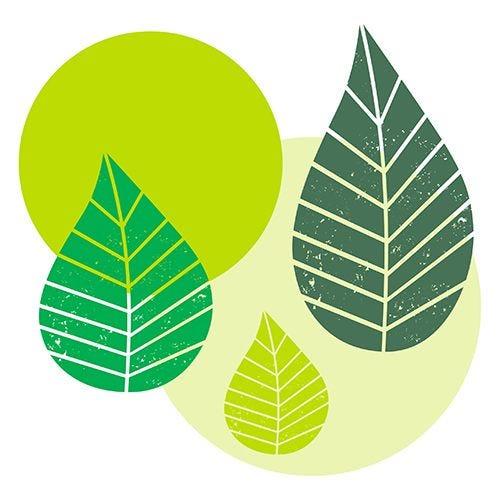 Serviette 3 plis pliage 1/4 40 cm x 40 cm vert ''Graphic Leaves'' par 200