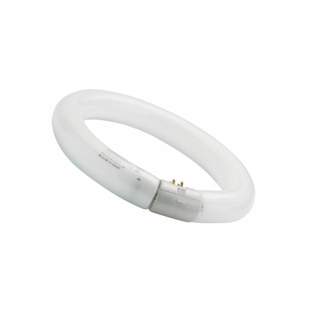 Tube fluo Circline 22W 4000K G10
