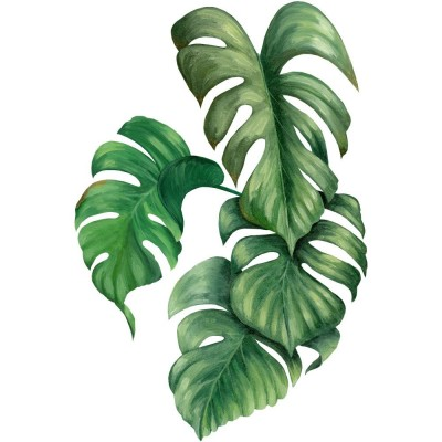 Sticker philodendron droite - 62,5 x 95 cm-Stickers vitrine